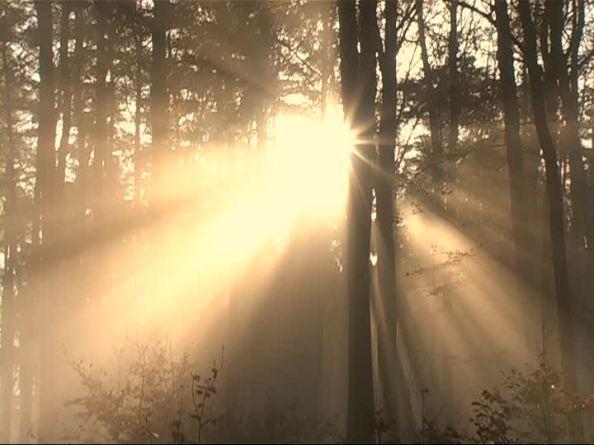 rayo de sol