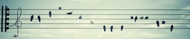 cropped-mirador-del-alto-musica-final-2